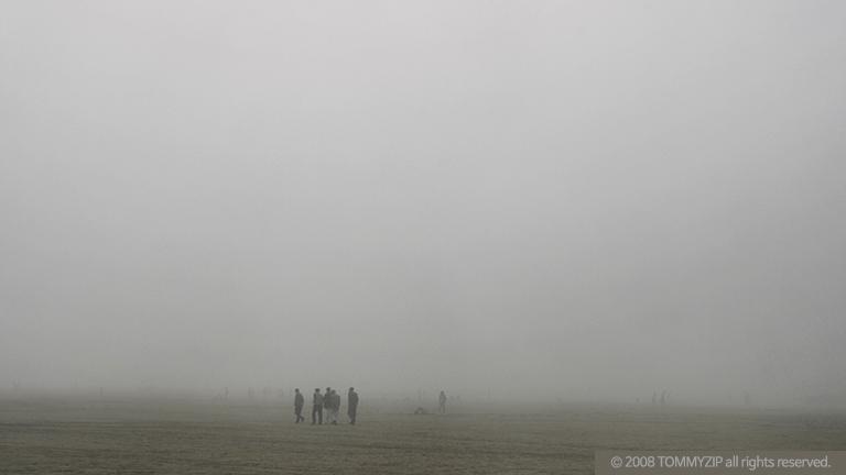 인간사회 2008